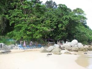 img_6169-300x225 15 WEEKS - THAILAND DIARIES - EPISODE 16