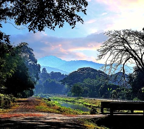 Early morning near Chiang Mai - November