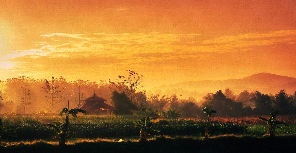 The mist catches fire in the morning sunrise. Northern Thailand.