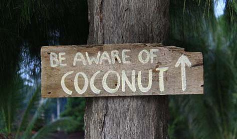 A sign on a beach on Malaysia's Perhentian islands. Pic: Joanne Lane, www.visitedplanet.com