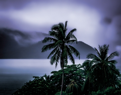 The ghostly island backdrop in Chalong Bay frames coconut trees in a storm