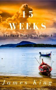 15-weeks-2017 How did '15 WEEKS' become an Amazon No.1 best seller in ONE day?